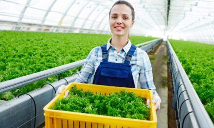 Jadi Petani Modern? Ini Dia Rekomendasi Bisnisnya!